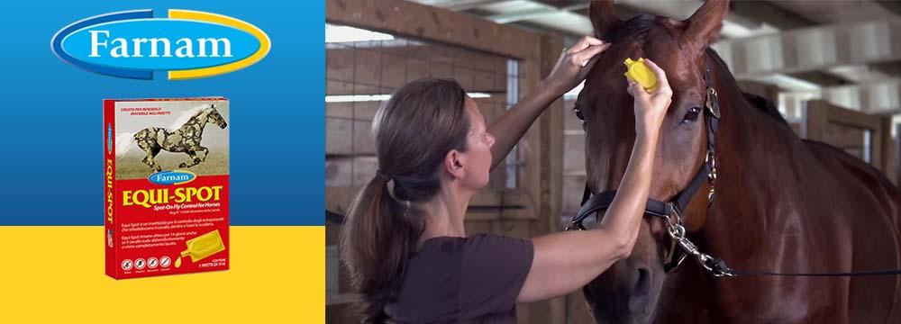 Equi-Spot Insektenschutz für Pferde - Sehen Sie sich das Video an!