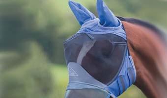 Pferde Fly Maske Deluxe