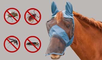 Ergonomische Insektenschutzmaske